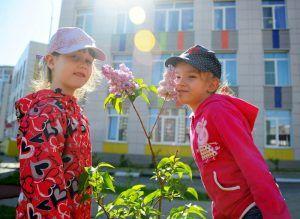 Территорию детского сада при школе №2123 благоустроят. Фото: Александр Кожохин, «Вечерняя Москва»