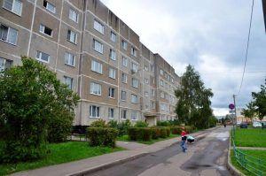 Специалисты проверили около 500 домов в районе. Фото: Анна Быкова