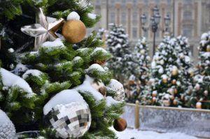 Парк культуры и отдыха «Красная Пресня» станет площадкой для новогоднего фестиваля. Фото: Анна Быкова, «Вечерняя Москва»