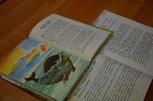 Лекция о детских и подростковых книгах пройдет в районной библиотеке. Фото: Анна Быкова