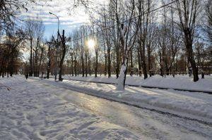 Каток в парке «Красная Пресня» будет работать по измененному режиму. Фото: Анна Быкова