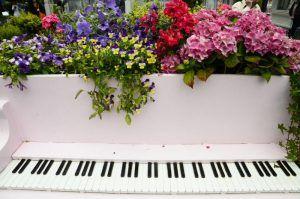 Концерт фортепианной музыки пройдет в консерватории имени Петра Чайковского в режиме онлайн-трансляции. Фото: Анна Быкова