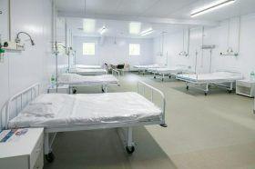 Почти 2000 пациентов приняли перепрофилированные после COVID-19 стационары. Фото: сайт мэра Москвы