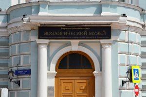 Виртуальную экскурсию проведут сотрудники Зоологического музея Московского государственного университета. Фото: Анна Быкова