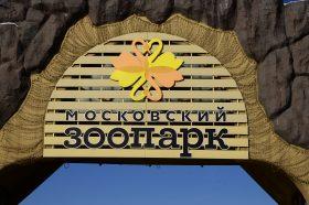 Представители Московского зоопарка приняли участие в проекте «Спасибо, волонтеры Москвы». Фото: Анна Быкова