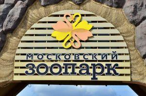 Реконструкцию Московского зоопарка закончат к лету 2021 года. Фото: Анна Быкова