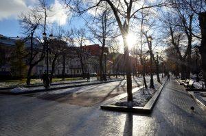 Представители Московского планетария рассказали о зимнем солнцестоянии. Фото: Анна Быкова