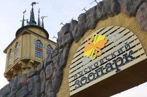 Пешеходный мост Московского зоопарка временно закроют. Фото: сайт мэра Москвы