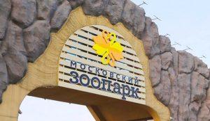 Квест в рамках специального проекта состоялся в Московском зоопарке. Фото: сайт мэра Москвы