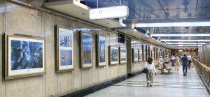 Галерея «Метро» открыли историческую выставку. Фото: сайт мэра Москвы